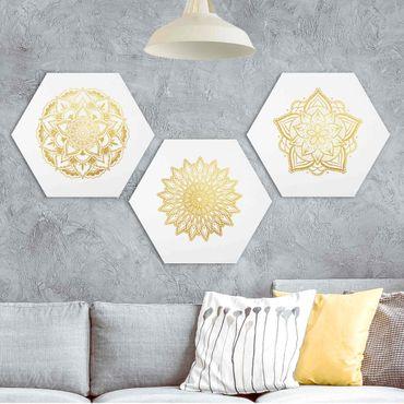 Esagono in forex - Mandala Fiore Sun illustrazione imposta gold