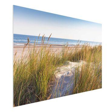 Stampa su Forex - Beach Dune Al Mare - Orizzontale 2:3