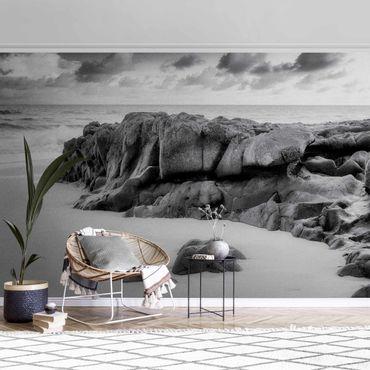 Carta da parati metallizzata - Roccia marina in bianco e nero