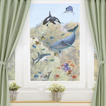Adesivi da finestra - Fauna mare