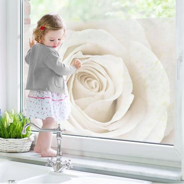 Decorazione per finestre Pretty White Rose