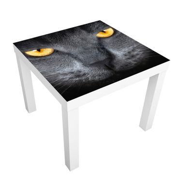 Carta adesiva per mobili IKEA - Lack Tavolino Gauze Cats