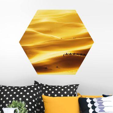 Esagono in Alu-dibond - dune dorate