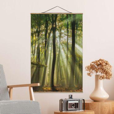 Foto su tessuto da parete con bastone - Giornata di sole nel Bosco - Verticale 3:2