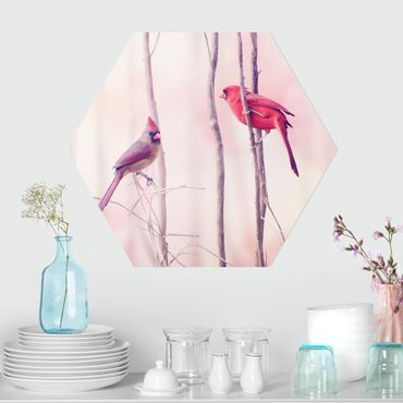 Esagono in forex - Uccelli sui rami