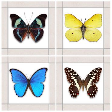 Adesivo per piastrelle - Elegant Butterfly Set 10cm x 10cm