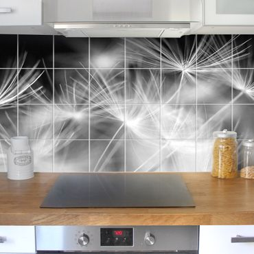 Adesivo per piastrelle - Moving Dandelions close up on black background