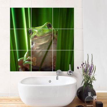 Adesivo per piastrelle - Merry Frog - Quadrato