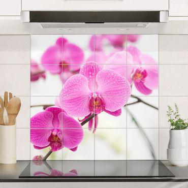 Adesivo per piastrelle - Close Orchid - Quadrato