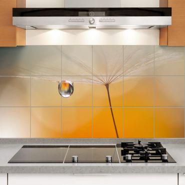 Adesivo per piastrelle - Dandelion In Orange - Orizzontale
