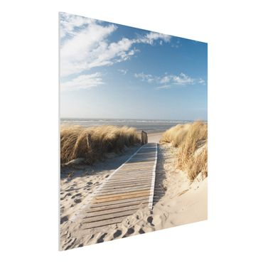 Quadro in forex - Baltic beach - Quadrato 1:1
