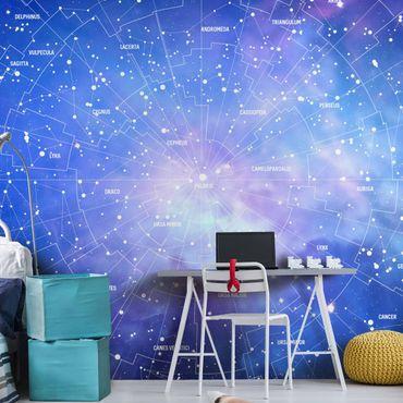 Carta da parati - Constellation Mappa Del Cielo