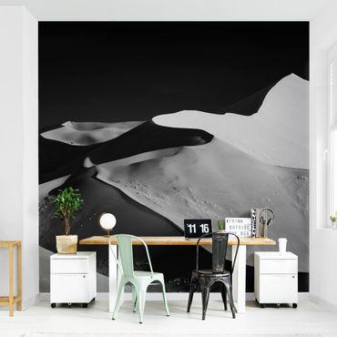 Carta da parati - Deserto - Dune bianco e nero