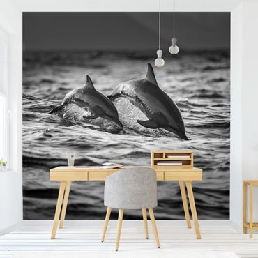 Carta da parati - Due delfini che saltano