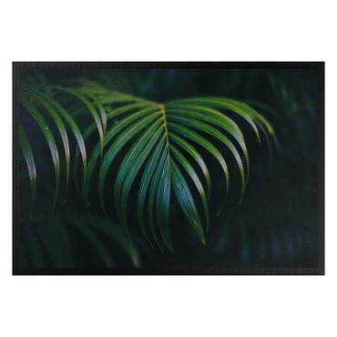 Zerbino - Dark palm leaves