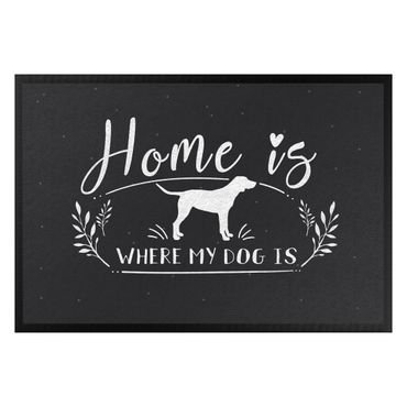 Zerbino - Home Is Where My Dog ??Is