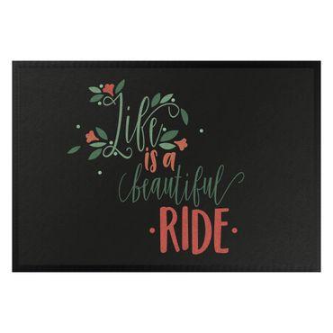 Zerbino - Life is a beautiful ride