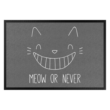 Zerbino - Meow Or Never