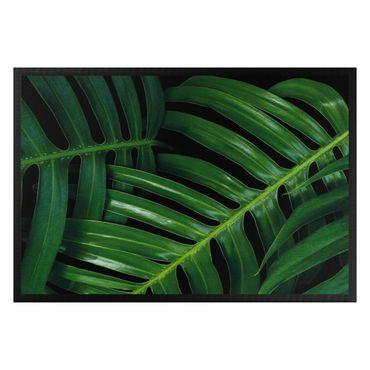 Zerbino - Palm leaves