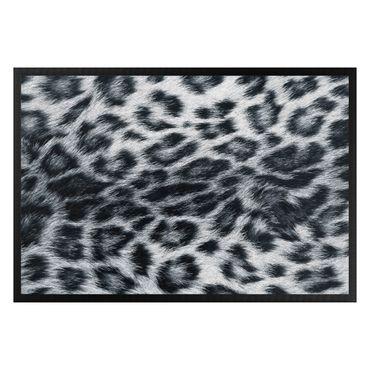 Zerbino - Snow leopard
