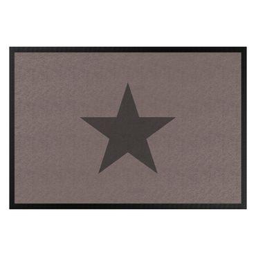 Zerbino - Star In Drab
