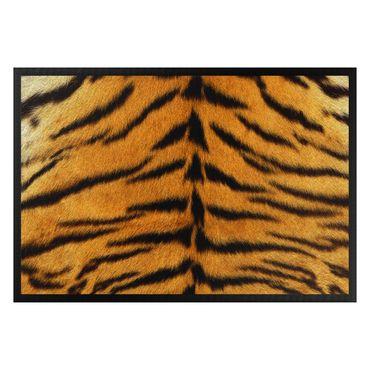 Zerbino - tiger skin