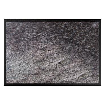 Zerbino - Wolve skin