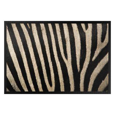 Zerbino - Zebra skin Design