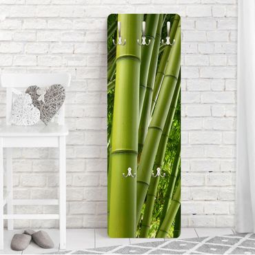 Appendiabiti - Bamboo Trees
