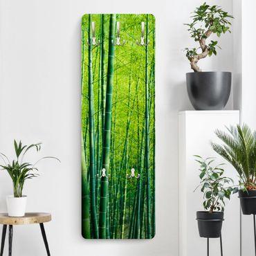 Appendiabiti - Bamboo forest