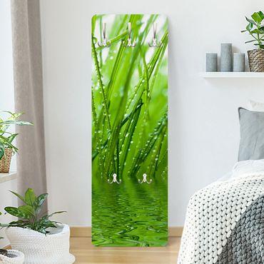 Appendiabiti da parete verde - Rugiada del mattino