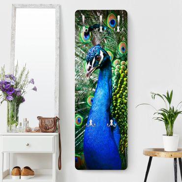Appendiabiti - Precious Peacock