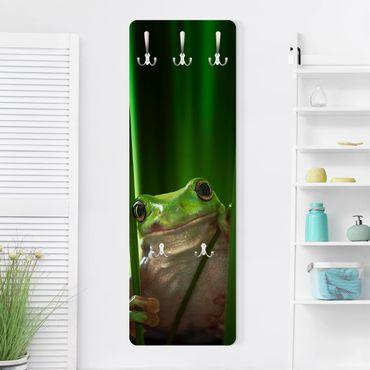 Appendiabiti - Happy Frog- Slender
