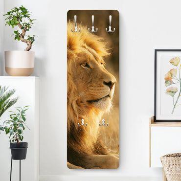 Appendiabiti - Lion King