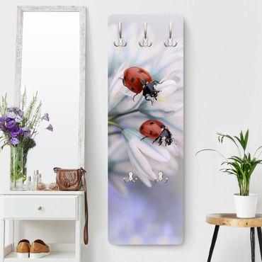 Appendiabiti - Ladybird Couple