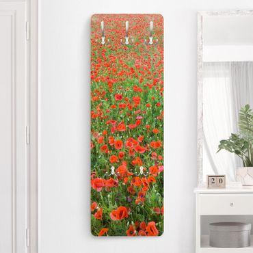 Appendiabiti - Poppy field