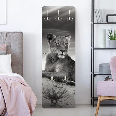 Appendiabiti - Resting Lion