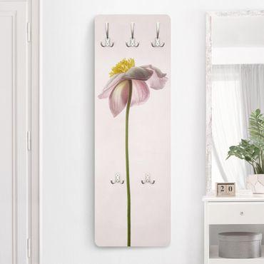 Appendiabiti - Fiori Anemone rosa