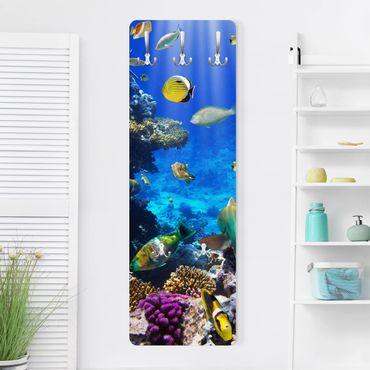 Appendiabiti - sogni subacquee
