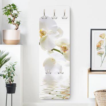 Appendiabiti - Orchidea bianca su acqua