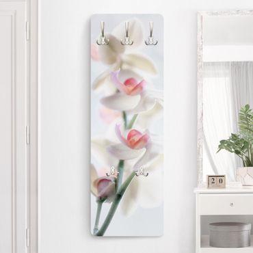 Appendiabiti - Orchidea fragile