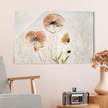 Quadro in vetro - Papaveri secchi con erbe delicate