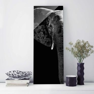 Quadro in vetro - African Elephant black-white - Pannello