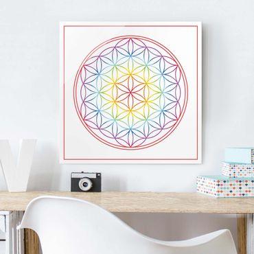 Quadro in vetro - Flower of life colorful - Quadrato 1:1