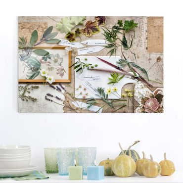 Quadro in vetro - Flowers And Garden Herbs Vintage - Orizzontale 3:2