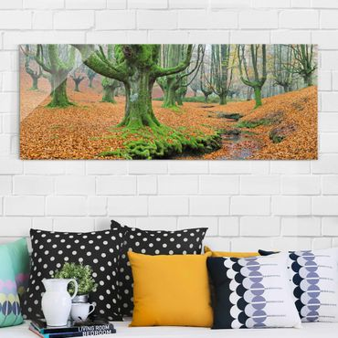 Quadro in vetro - Beech Forest In The Gorbea Natural Park In Spain - Panoramico