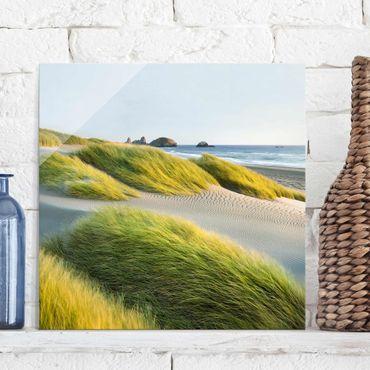 Quadro in vetro - Dunes and grasses at the sea - Quadrato 1:1