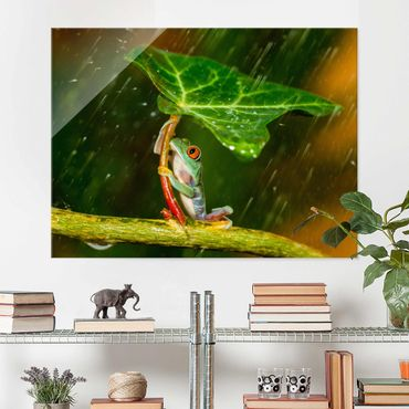 Quadro in vetro - Rana In The Rain - Large 3:4
