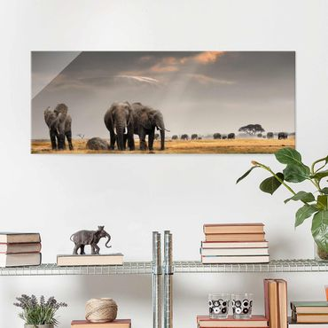 Quadro in vetro - Elephant savanna - Panoramico