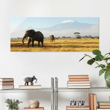 Quadro in vetro - Elephants before Kilimanjaro in Kenya - Panoramico